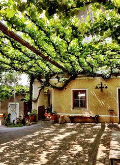Enjoy an afternoon at a Buschenschank (wine tavern) #feelaustria