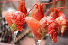 Cocktail de homard à l'avocat et pamplemousse rose