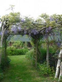 Une pergola avec store accordéon fait maison   jardin   Pinterest ...