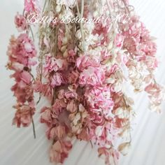 Dried Pink Preserved Delphinium Larkspur Flowers Natural | Etsy
