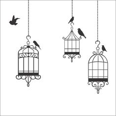 blackbirds and cages