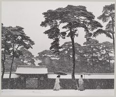 Werner Bischof, In the Court of the Meiji Temple, Tokyo, 1952 {love those trees...}