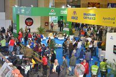 Projeto de exportação Brazilian Cattle chega aos EUA e comemora crescimento nos últimos três anos