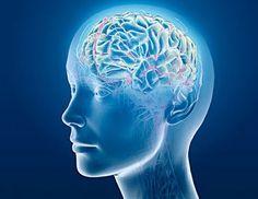 Medicina Alternativa, saude e plantas medicinais: Meditação Mental