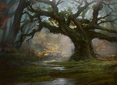 http://media.wizards.com/images/magic/daily/features/feature159_forest.jpg