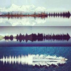 SOUNDWAVES   PatternCurator                                                                                                                                                                                 More