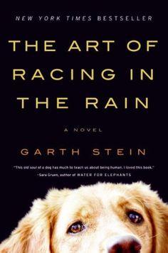 The Art if Racing in the Rain