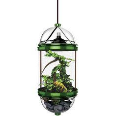 Chameleon Cantina, Green