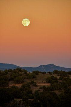 La Cienga,New Mexico,US