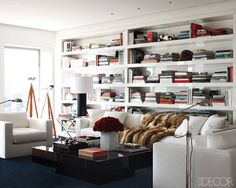 Library/Living Room - great storage space for books. Don't like the rug very much but love the chairs and couch.