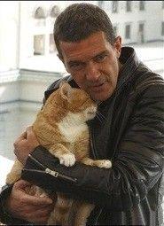 Grandes artistas y sus gato.Antonio Banderass.