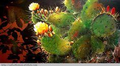 cactus 6 PINNED by My Art y Lezama