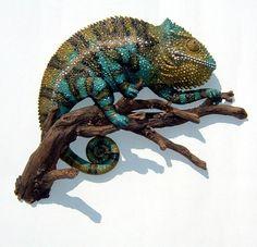 Chameleon Sculpture by thebiscuitboy.deviantart.com on @deviantART