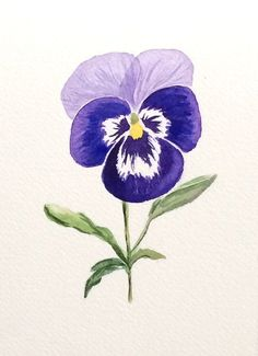 ORIGINAL Watercolor Pansy Original Pansy Art by ColorOfChlorophyll