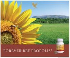 Forever Living is the world's largest grower, manufacturer and distributor of Aloe Vera. Discover Forever Living Products and learn more about becoming a forever business owner here. Bee Propolis, Forever Business, Bee Free, Royal Jelly, Natural Antibiotics, Bee Pollen, Health And Nutrition, Nutrition Products, Forever Living Products