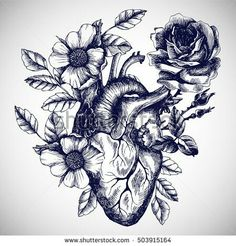 Vector Hand Drawn Illustration in Vintage Style. Design for Your TBy moopsi Blooming Anatomical Human Heart. Vector Hand Drawn Illustration in Vintage Style. Design for Your T-moopsi-Art Print Real Heart Tattoos, Human Heart Tattoo, Human Heart Drawing, Heart Anatomy Tattoo, Realistic Heart Tattoo, Broken Heart Tattoo, Broken Heart Drawings, Human Art, Bild Tattoos