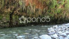 Crystal clear stream next to rock cliff - Stock Footage | by JahnProductions