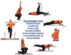Functional Movement Corrective Exercises | Functional Movement Screening :: Iselborn Chiropractic