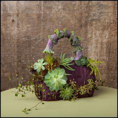 -botanical purse with succulents Francoise Weeks - photo: Ted Mishima Arte Floral, Deco Floral, Floral Design, Flower Show, Flower Bag, Beautiful Flower Arrangements, Floral Arrangements, Beautiful Flowers, Floral Bags