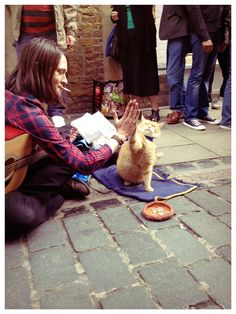 James Bowen and Street Cat Bob