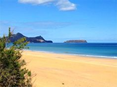 Porto Santo Island, Portugal 2012 with my soulies Phillips Wood and Maui! Oh The Places You'll Go, Great Places, Beautiful Places, Places To Visit, Portugal Vacation, Thats The Way, What A Wonderful World, Beautiful Islands, Beach Trip