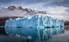 Fine Art Landscape, Nature and Wilderness Photography Wild Nature, Antarctica, Nature Photos, Background Images, Wilderness, Around The Worlds, Fine Art, Amazing, Photography