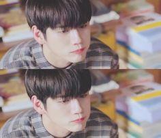 Ong Ong Seung Woo, Nu'est Jr, Hd Love, Lai Guanlin, Produce 101 Season 2, Kim Jaehwan, Ha Sungwoon, Flower Boys, Kpop Fanart