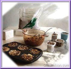 Recettes pour préparation de gâteaux de graines moulés pour les oiseaux