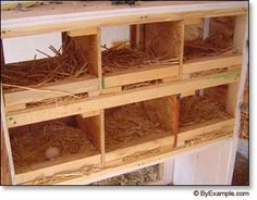 Here is a DIY instructions on building your own chicken nest boxes
