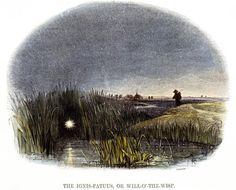 "'The Ignis-Fatuus, or Will-o'-the-Wisp', 1849. ""will o'wisp"": eerie (night) lights in bogs. 19th century entomologists 'explained' this phenomenon as caused by mole-crickets!"