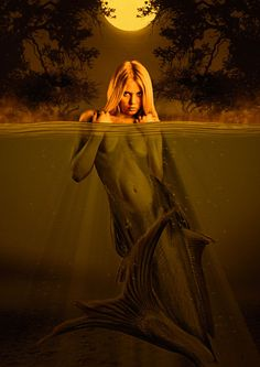 Mermaid by Stephan Momberg on 500px