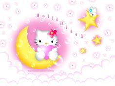 Sakid Wallpaper Kitty