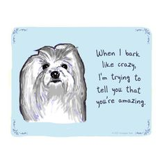 """When I bark like crazy I'm trying to tell you that you're amazing"" i wish this was true with my haylie ;)"