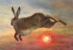 Hare at Sunset ~Painting by Sheila Williams