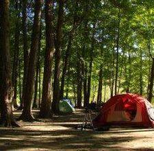 98 Best Camper Remodel Images On Pinterest Camper