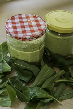 Recette de cueillette : la mayonnaise à l'ail des ours Mayonnaise, Sauces, Wild Garlic, Cooking Food, Recipes, Gravy, Dips