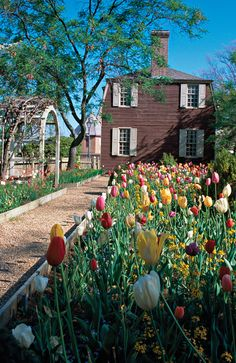 The Lightfoot Tenement boasts a beautiful garden which can be enjoyed by all visitors to Colonial Williamsburg.