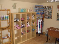 pictures of dog grooming shops   Collars and Cuts Dog Grooming: Dog Grooming in Edinburgh, Scotland ...