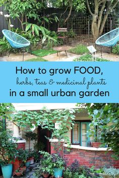 Potager Garden How much food can you grow in a small urban garden? - Tips on using every part of your garden to grow fruit, vegetables, teas and medicinal plants. Even the smallest garden can be turned into a mini-farm!