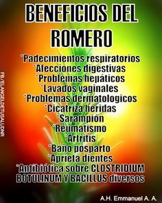 BENEFICIOS DEL ROMERO