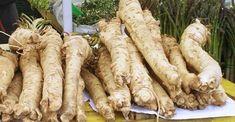 Facebook Common Garden Weeds, Fresh Horseradish, Cocktail Sauce, Root Vegetables, Medicinal Plants, Cool Plants, Natural Skin Care, Herbalism, Metabolism