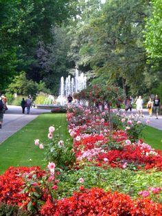 The Berlin Zoo garden