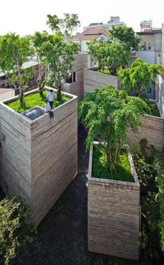 House For Trees By Vo Trng Nghia Architects