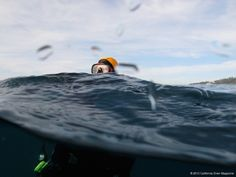 Lessons Learned: How Deep is Too Deep? The Dive that Changed Everything… | Scuba diving and skin diving California and beyond