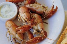 Yabbies with dill mayonnaise