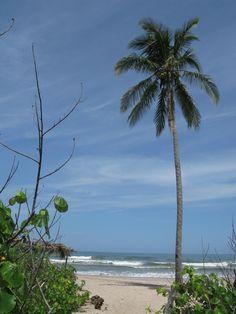 Giuones Beach, Nosara, entrance from Harmony Hotel