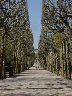 Latin Quarter, Botanical Gardens / Jardin des Plantes, Place Valhubert, Paris V