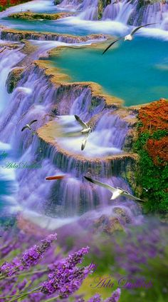 So picturesque. Lovely colours in this waterfall So picturesque. Lovely colours in this waterfall Beautiful Nature Pictures, Beautiful Nature Wallpaper, Amazing Nature, Nature Photos, Beautiful Landscapes, Beautiful World, Beautiful Places, Nature Nature, Landscape Photography