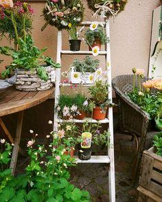 Uma escada de madeira para substituir a estante na área externa e acomodar seus vasinhos de flores! Tem  ideia mais charmosa?🌱💚
