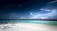Here are 25 beautiful tropical beach scene wallpapers you can use to brighten your day. Includes photos of beach scenes taken from around the world. Beach Scene Wallpaper, Strand Wallpaper, Hd Wallpaper, Computer Wallpaper, Desktop Wallpapers, Beach At Night, Beach Fun, Beach Background, Background Images